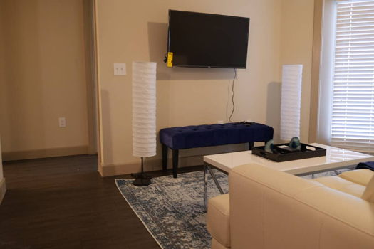 Picture 3 of 1 bedroom Apartment in Richardson