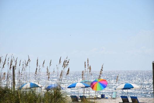 Picture 31 of 1 bedroom Condo in Gulf Shores