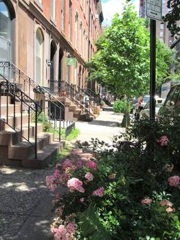 Picture 17 of 2 bedroom Apartment in Philadelphia