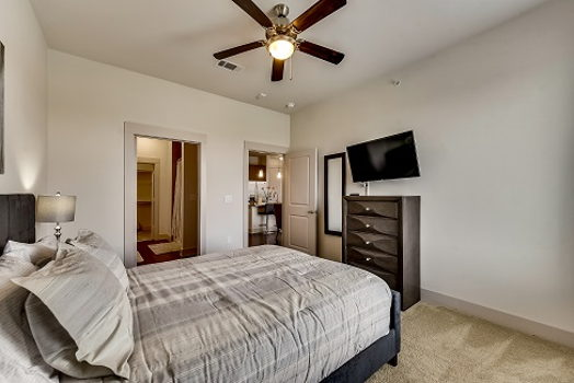 Picture 3 of 2 bedroom Apartment in Richardson