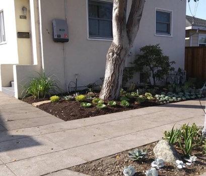 Picture 15 of 1 bedroom House in Berkeley