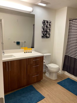 Picture 5 of 2 bedroom Apartment in San Jose