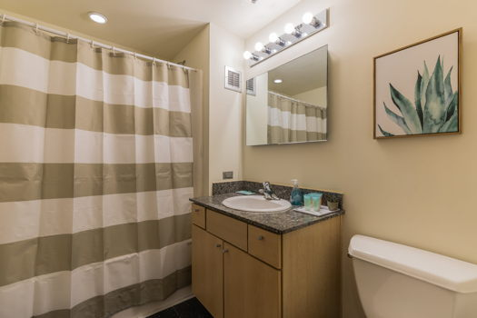 Picture 18 of 2 bedroom Apartment in Chicago