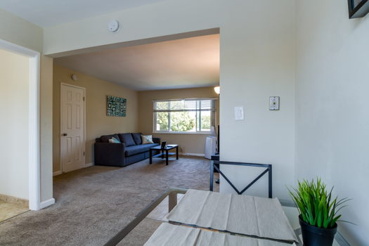 Picture 5 of 2 bedroom Apartment in Sunnyvale