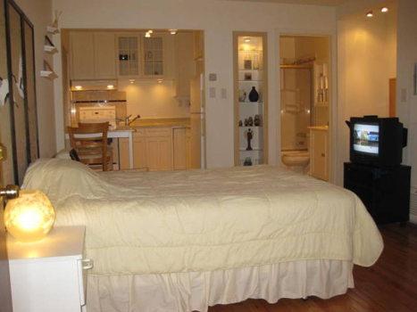Picture 5 of 1 bedroom Apartment in Santa Clara