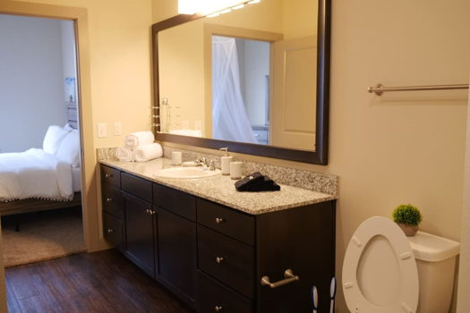 Picture 8 of 1 bedroom Apartment in Richardson