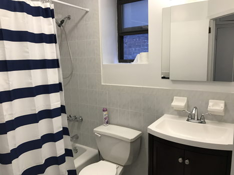 Picture 5 of 6 bedroom Apartment in New York