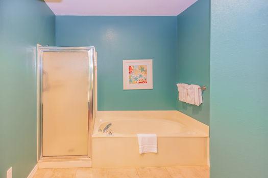 Picture 19 of 1 bedroom Condo in Branson