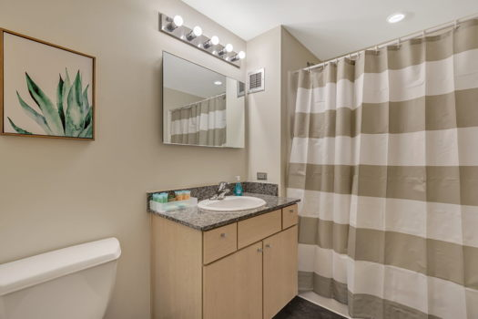 Picture 14 of 2 bedroom Apartment in Chicago