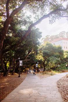 Picture 34 of 4 bedroom House in Berkeley