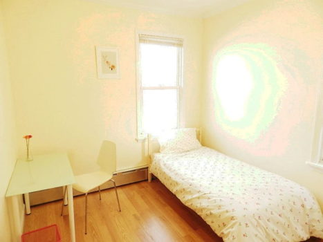 Picture 1 of 1 bedroom Apartment in Queens