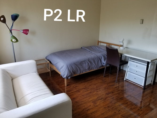 Picture 5 of 1 bedroom Apartment in Mountain View