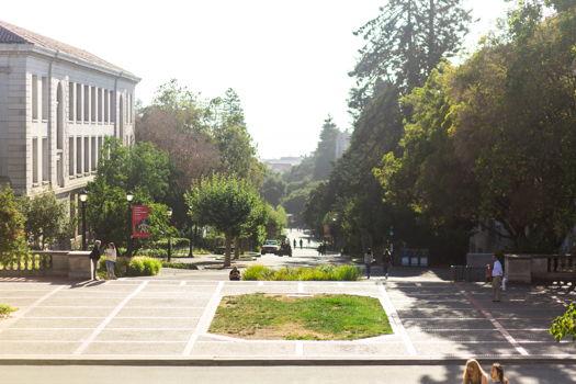 Picture 28 of 7 bedroom House in Berkeley