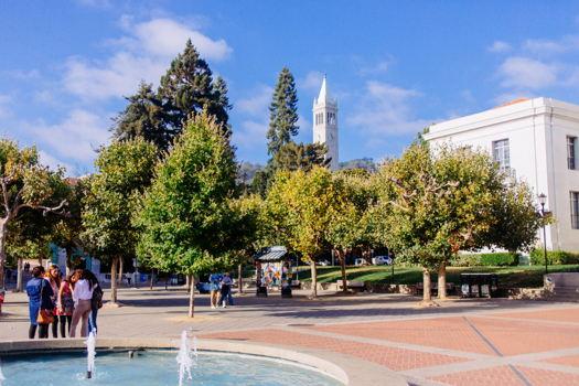 Picture 33 of 4 bedroom House in Berkeley
