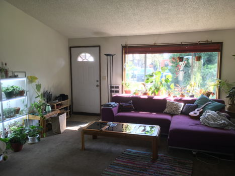 Picture 2 of 2 bedroom House in Portland