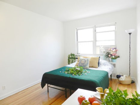 Picture 2 of 1 bedroom Apartment in Queens