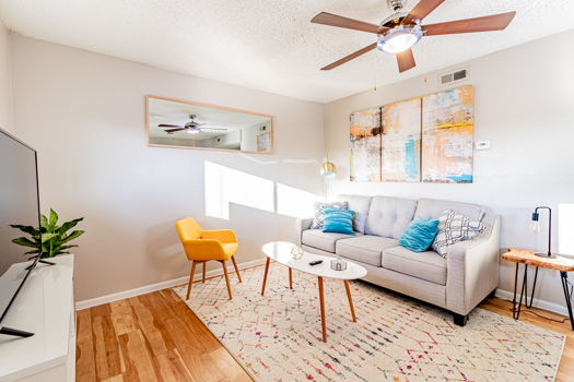Picture 1 of 2 bedroom Apartment in Austin