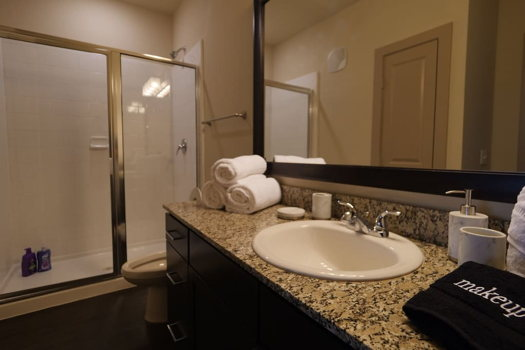 Picture 10 of 1 bedroom Apartment in Richardson