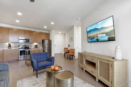 Picture 3 of 1 bedroom Apartment in San Antonio