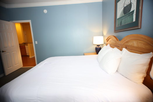 Picture 62 of 1 bedroom Condo in Branson